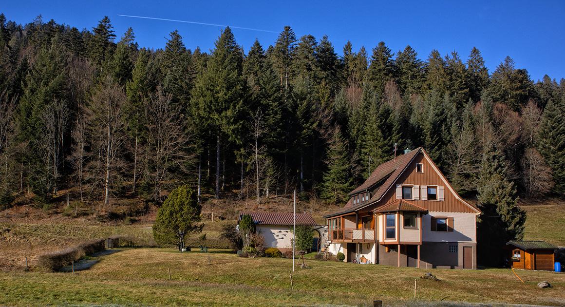 Ferienhaus Enztalblick in Enzklösterle im Nordschwarzwald - Blick von der Enz auf das Ferienhaus