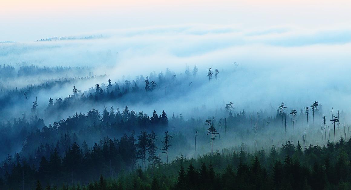 Ferienhaus Enztalblick in Enzklösterle im Nordschwarzwald - Geheimnisvolle Nebelstimmung frühmorgens über dem Nordschwarzwald