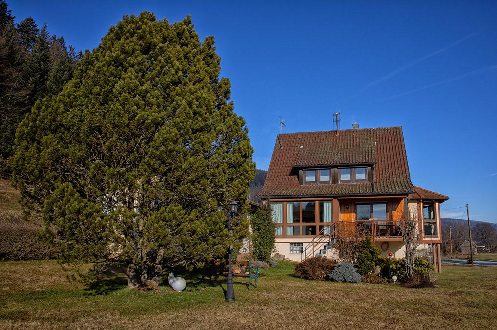 Ferienhaus Enztalblick in Enzklösterle im Nordschwarzwald - Blick aus dem Garten auf die Panoramafenster des Ferienhauses
