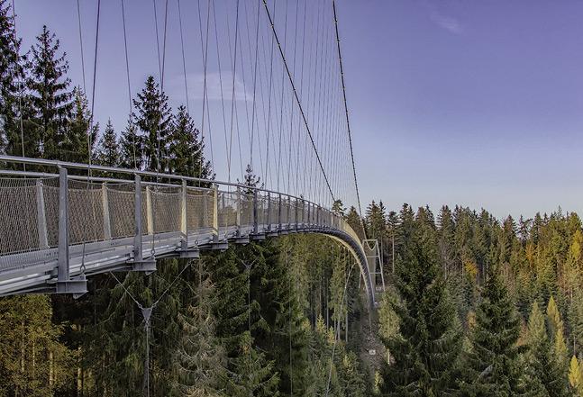 Ferienhaus Enztalblick in Enzklösterle im Nordschwarzwald - Die Wildline-Hängebrücke in Bad Wildbad
