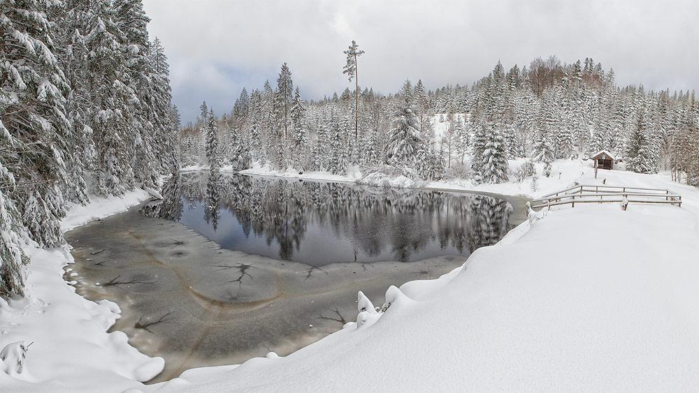 Ferienhaus Enztalblick in Enzklösterle im Nordschwarzwald - Wandervorschlag Kaltenbachsee - Der See im Winter