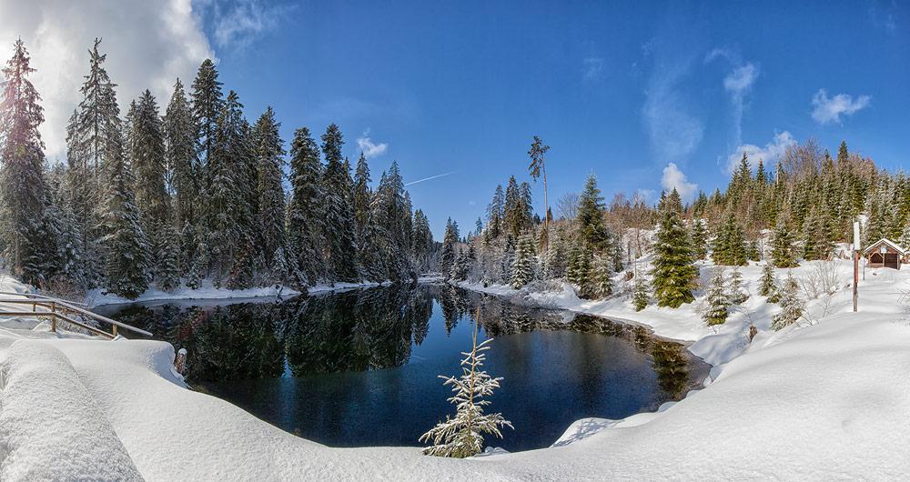 Ferienhaus Enztalblick in Enzklösterle im Nordschwarzwald - Wandervorschlag Kaltenbachsee: Der Kaltenbachsee im Winter