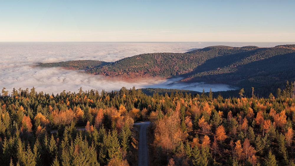 Ferienhaus Enztalblick in Enzklösterle im Nordschwarzwald - Wandervorschlag Hohlohsee - Herbstlicher Blick über die Rheinebene bei Hochnebel