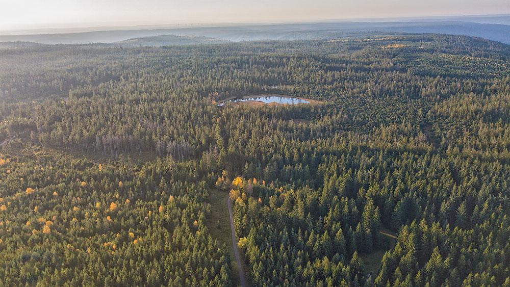 Ferienhaus Enztalblick in Enzklösterle im Nordschwarzwald - Wandervorschlag Hohlohsee - Der Hohlohsee auf der Hohlohebene
