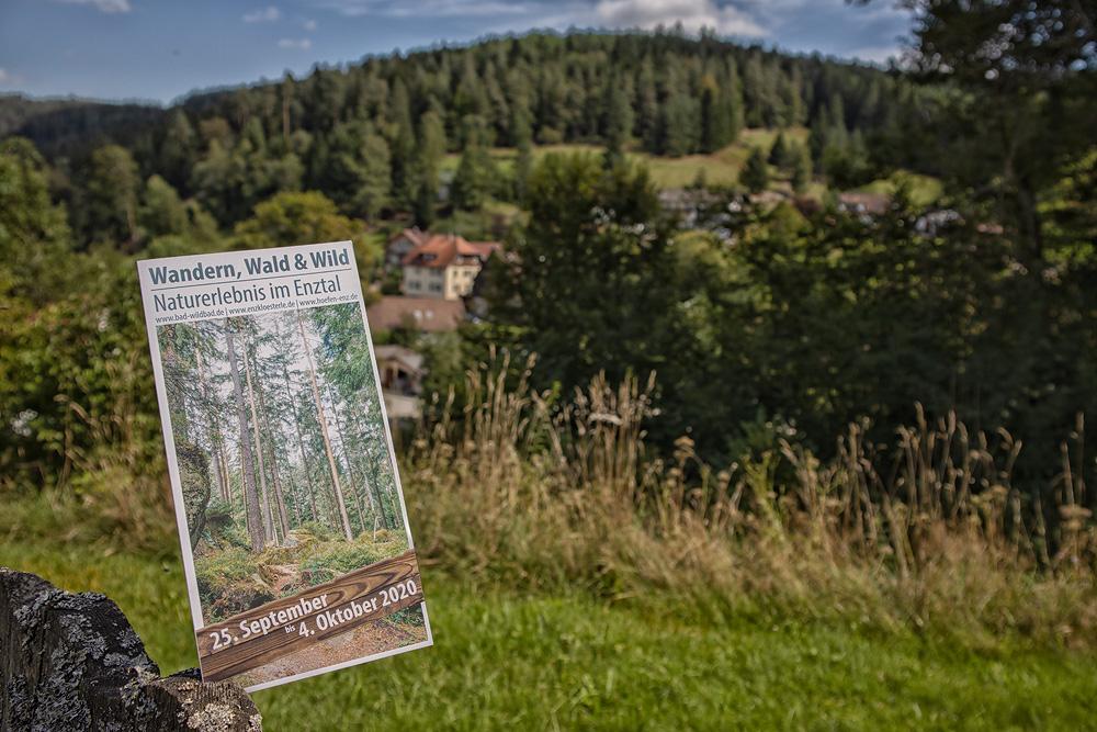 Ferienhaus Enztalblick - Wandern, Wald und Wild - Naturerlebnis im Enztal - 25.09.2020 bis 04.10.2020