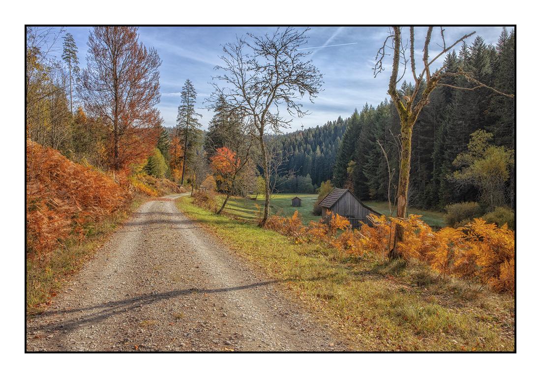 2020-10 Ferienhaus Enztalblick in Enzklösterle im Schwarzwald - Herbst im Enztal - Kaltenbachtal 01