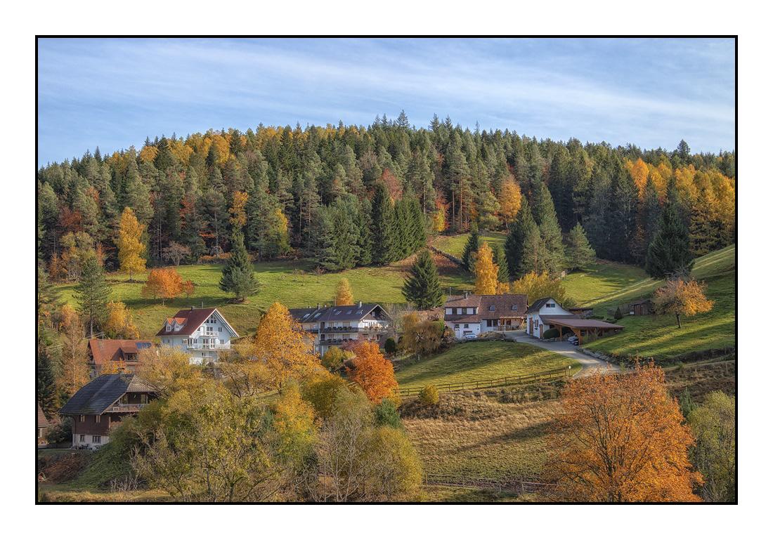 2020-10 Ferienhaus Enztalblick in Enzklösterle im Schwarzwald - Herbst im Enztal - Enzklösterle-Gompelscheuer