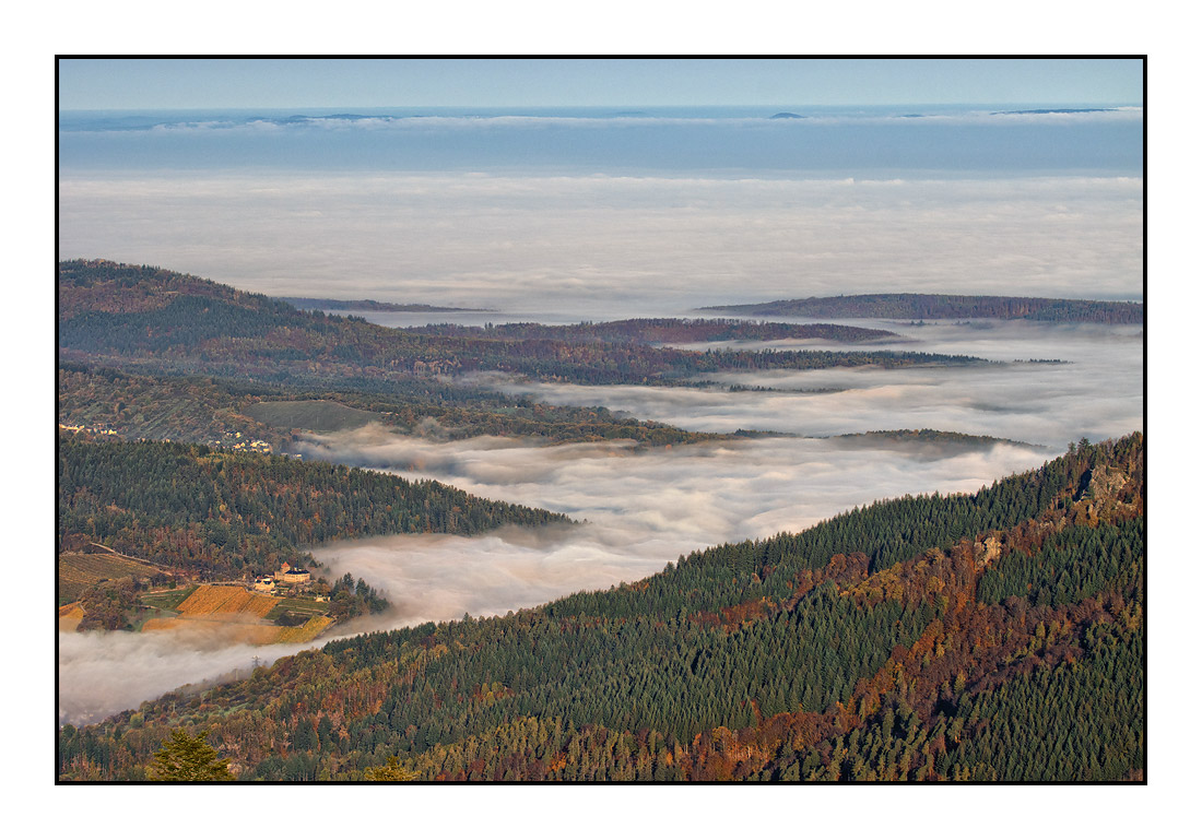 2020-11 Ferienhaus Enztalblick in Enzklösterle im Schwarzwald - Herbstliche Morgenstimmung auf dem Hohlohturm 03